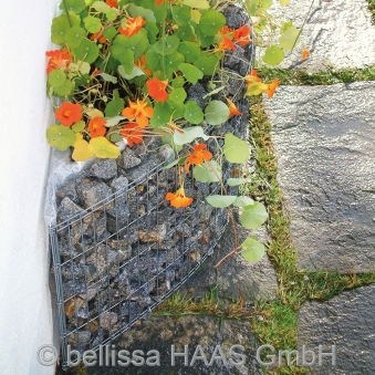 Hochbeet / Hauswandbeet Steinkorb bellissa 118x35x40cm Bild 2