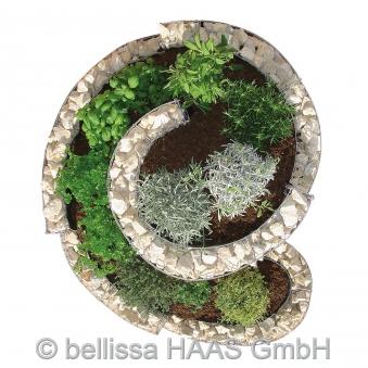 Kräuterspirale / Kräuterschnecke Steinkorb bellissa 110x90cm Bild 3