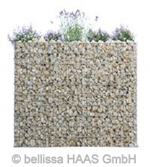 Schallschutz Gabione / Steinkorb bepflanzbar bellissa 120x40x50cm