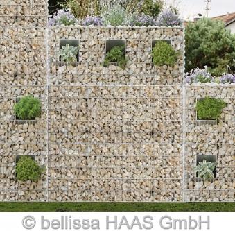 Schallschutz Gabione / Steinkorb bepflanzbar bellissa 120x40x100cm Bild 3