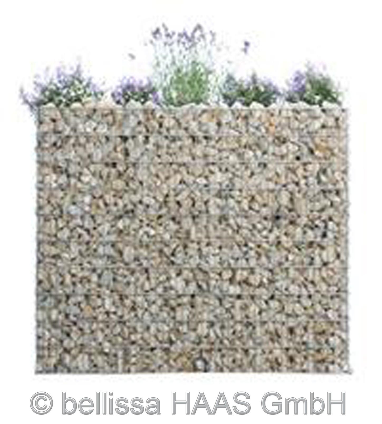 Schallschutz Gabione / Steinkorb bepflanzbar bellissa 120x40x50cm Bild 1