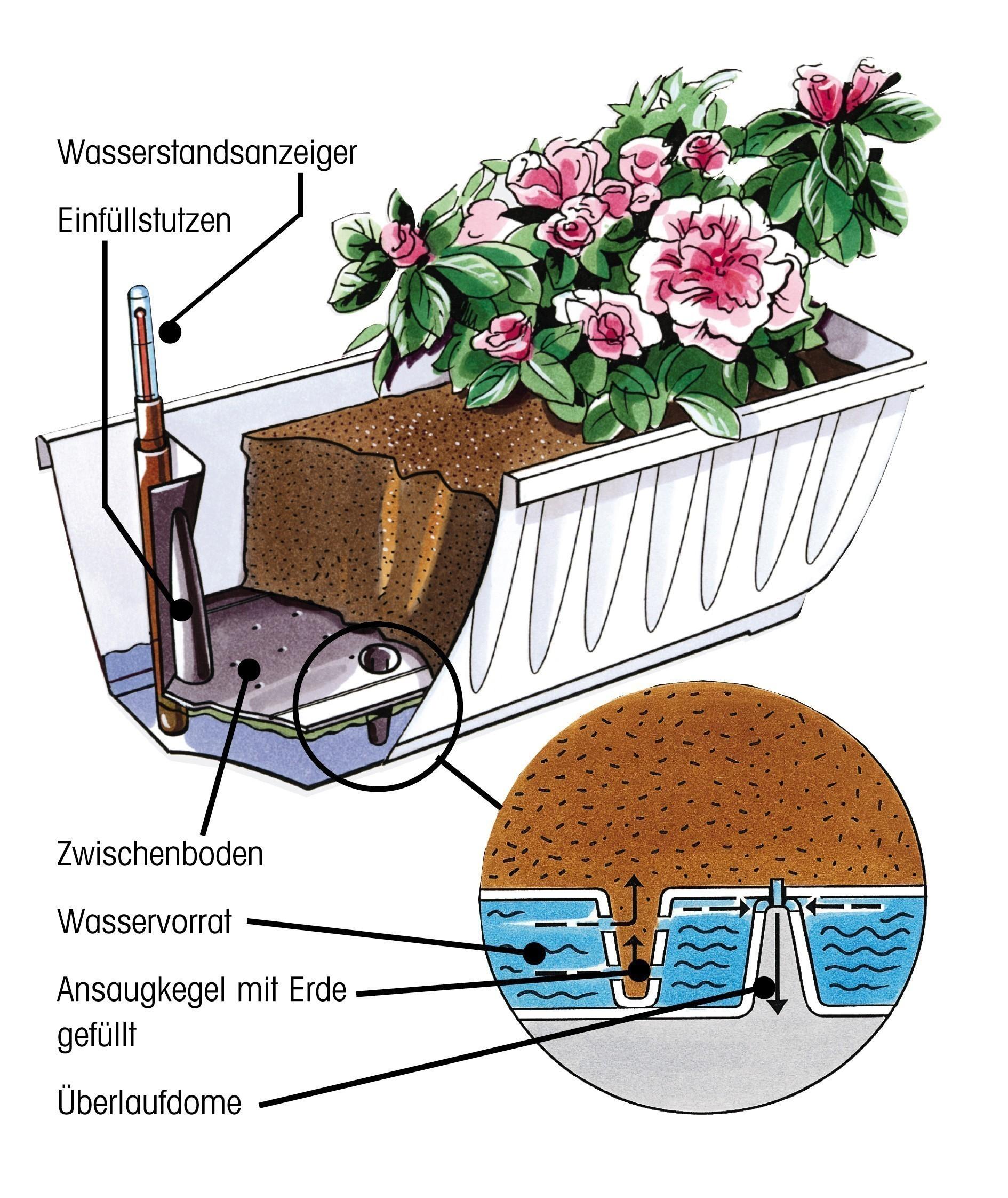 Bewässerungsblumenkasten Aqua Flor Plus 80 cm weiß Bild 2
