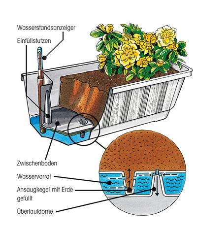 Bewässerungsblumenkasten Aqua Green Plus 60 cm braun Bild 2