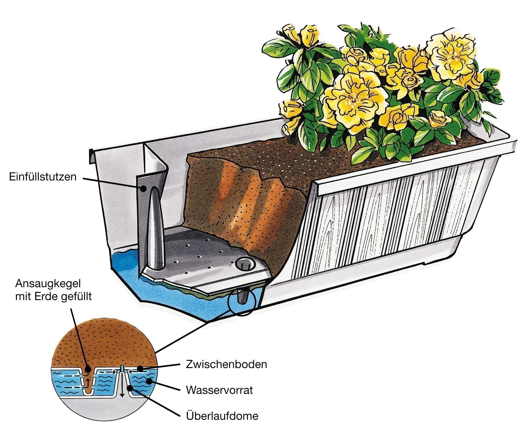 Bewässerungsblumenkasten Aqua Green Plus 60 cm weiß Bild 2