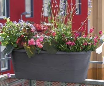 Blumenkasten Maya / Komplettset mit Halterung 50cm anthrazit Bild 3