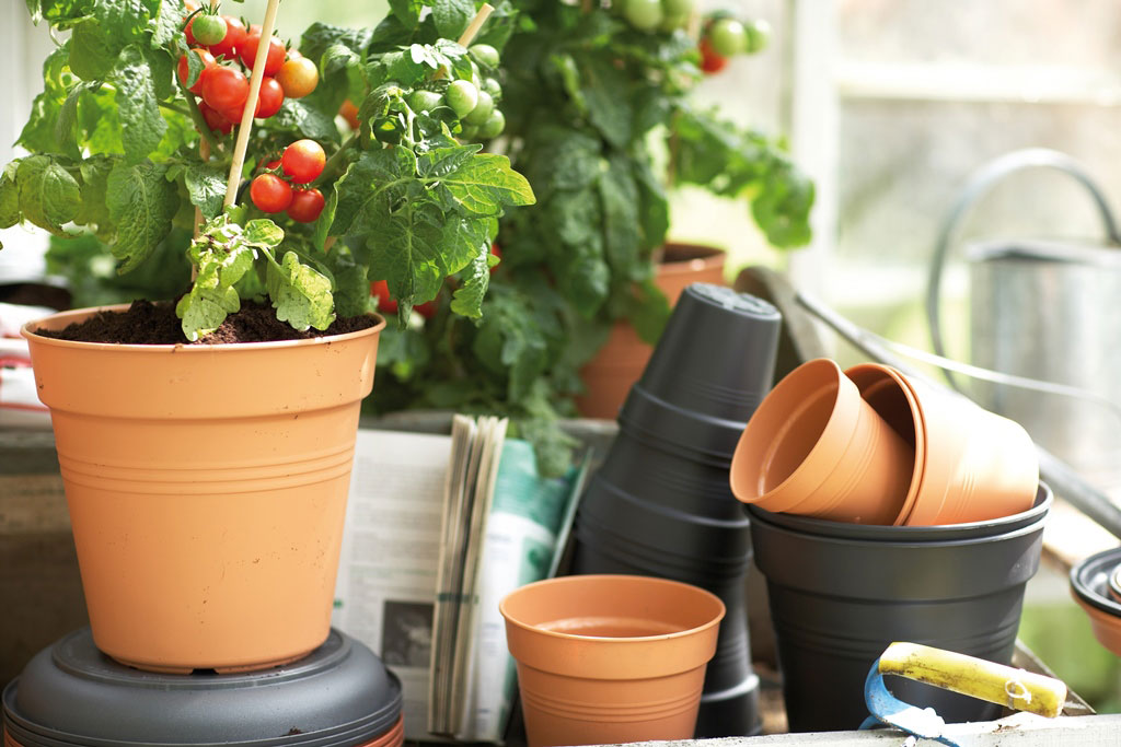 Untersetzer Blumentopf elho Pflanzkübel Green Basics Ø 25cm schwarz Bild 2