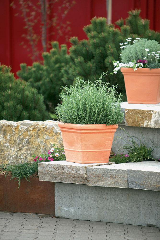 Geli Blumentopf / Pflanzgefäß Parma 40x40cm impruneta Bild 2