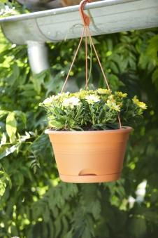Blumenampel / Hängeampel elho Green Basics Ø 28cm tonrot Bild 1