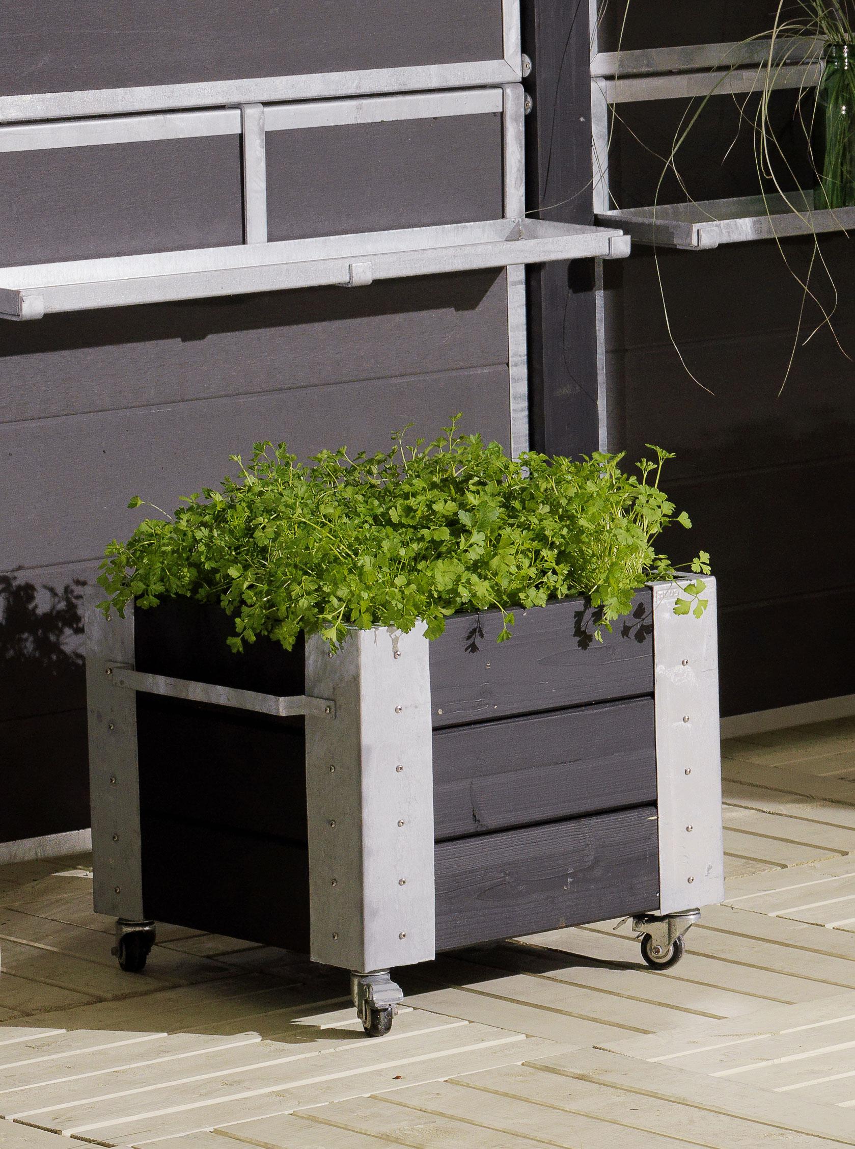 Blumenkasten Cubic mit Rädern Plus 46x50x45cm Holz schwarz Bild 2