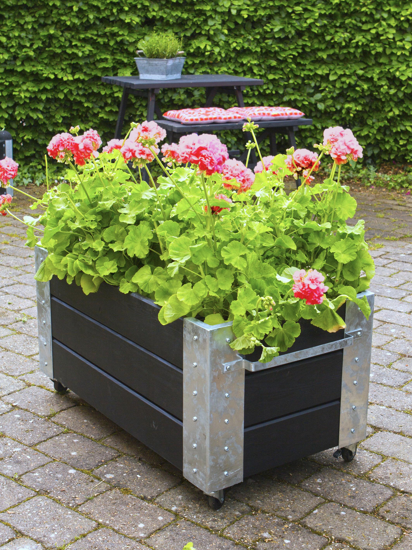 Blumenkasten Cubic mit Rädern Plus 87x50x45cm Holz schwarz Bild 2