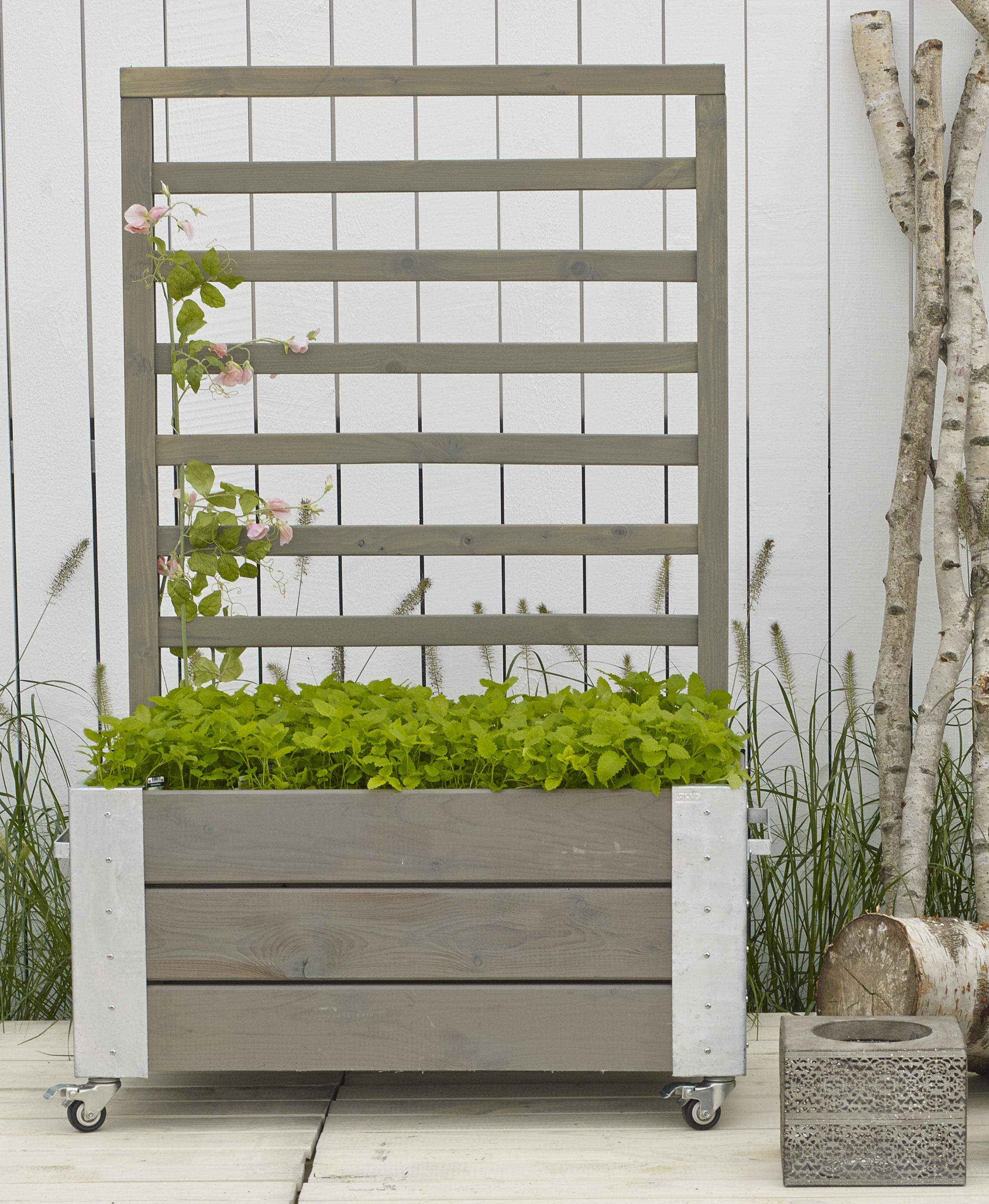 Blumenkasten Cubic mit Rankgitter Plus 87x50x130cm Holz graubraun Bild 2