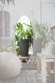 Pflanztopf elho Loft Urban Round High Ø 35cm H 46cm anthrazit Bild 1