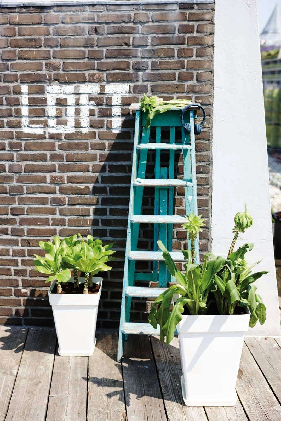 Pflanztopf elho Loft Urban Square High 30x30x41cm weiß Bild 2