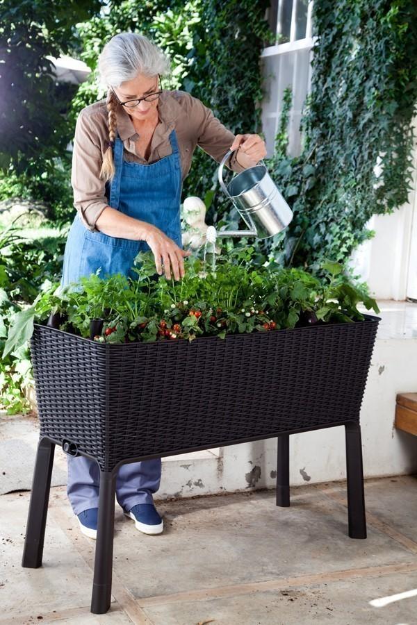 hochbeet pflanzkasten easy growing keter kunststoff. Black Bedroom Furniture Sets. Home Design Ideas