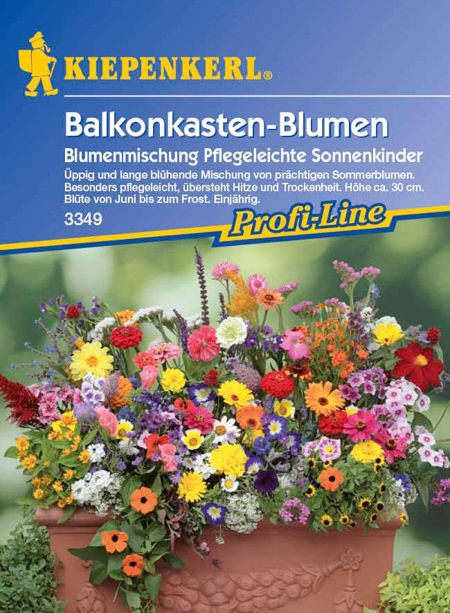 Blumenmischung Pflegeleichte Sonnenkinder  bei edingershopsde