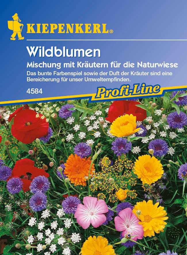 Saatgut  Wildblumen mit Kräutern, Mischung ein- und mehrjähriger Arten Bild 1