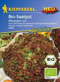 Saatgut  Roter Pflücksalat 'Bio-Saatgut' Bild 1