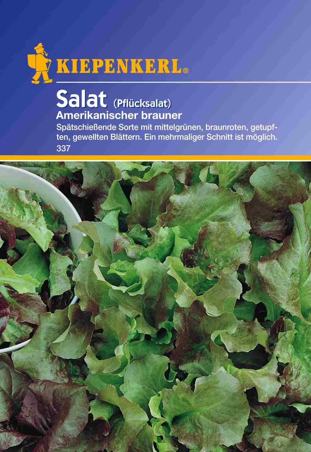 Saatgut Salat Amerikanischer brauner Bild 1