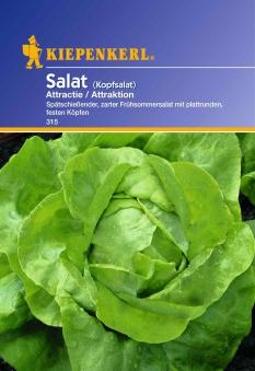 Saatgut Salat (Attractie) Attraktion Bild 1