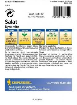 Saatgut Salat Dynamite Bild 2