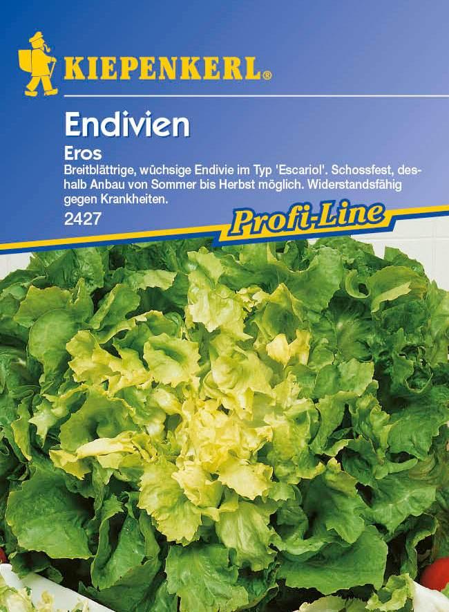 Saatgut Salat Eros Bild 1