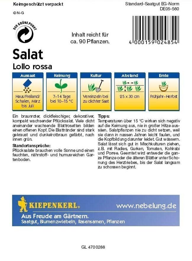 Saatgut Salat Lollo Rossa, rot Bild 2