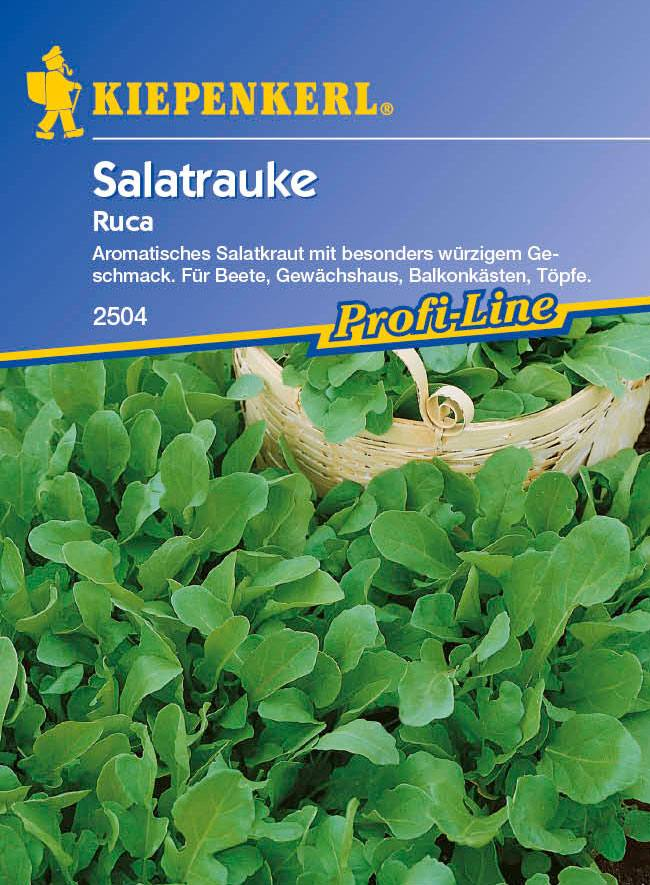 Saatgut Salat Ruca Bild 1