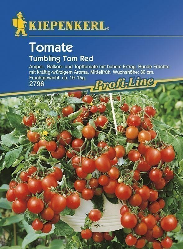 Kiepenkerl Saatgut Tomaten Tumbling Tom Red Bild 1