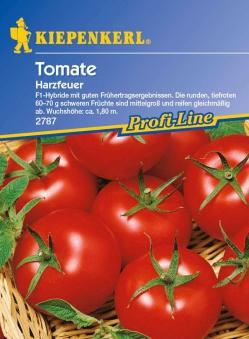 Saatgut Tomaten Harzfeuer F1 Bild 1