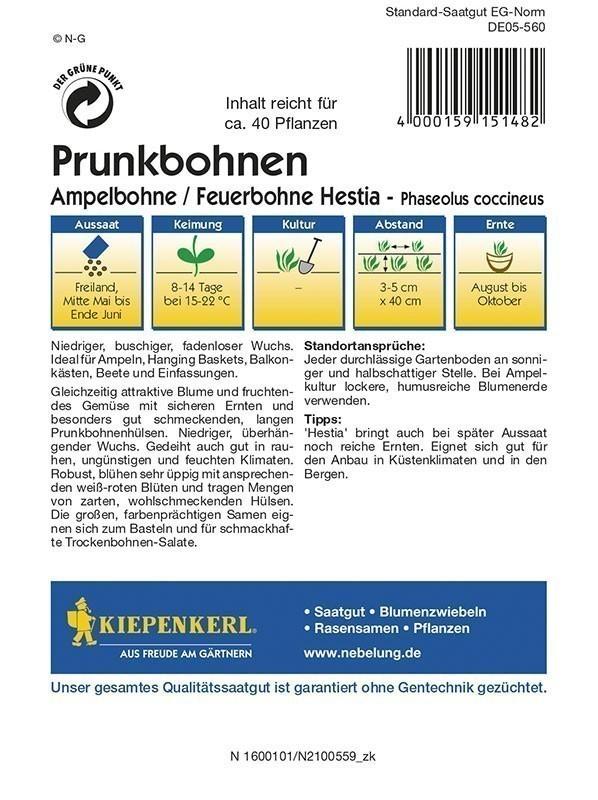 Kiepenkerl Saatgut Prunkbohne Ampelbohne / Feuerbohne Hestia Bild 2