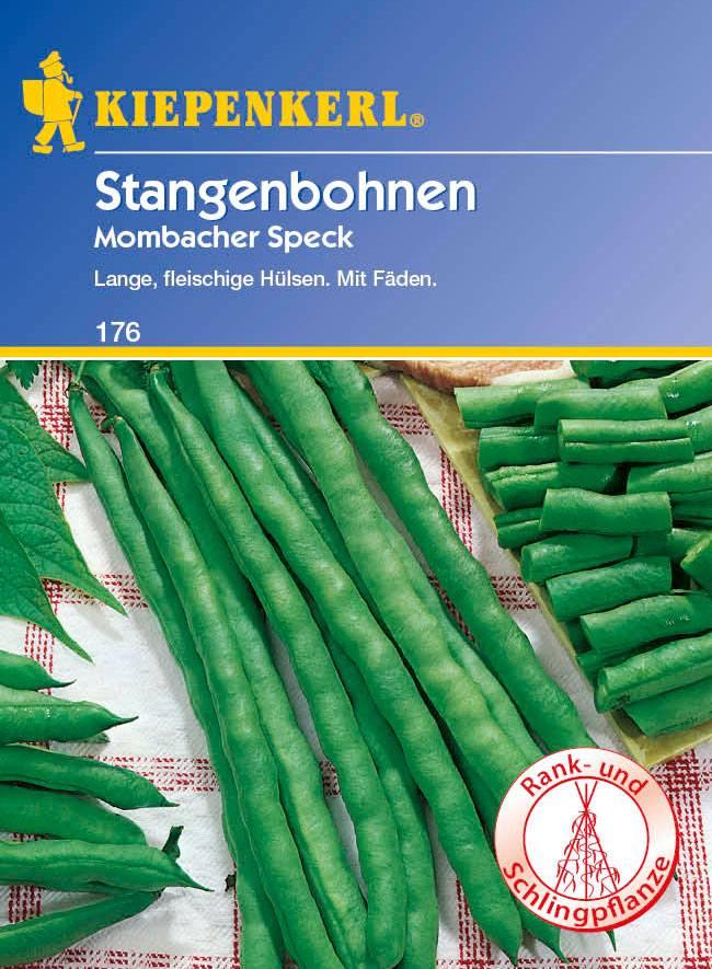Saatgut Bohnen Mombacher Speck Bild 1