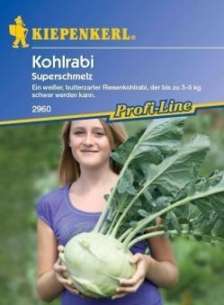 Saatgut Kohlrabi Superschmelz Bild 1