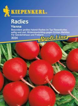 Saatgut Radieschen/ Radies Vienna F1 Bild 1