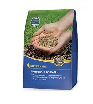 Kiepenkerl Rasenmischung Regenerations-Rasen 250g Bild 1