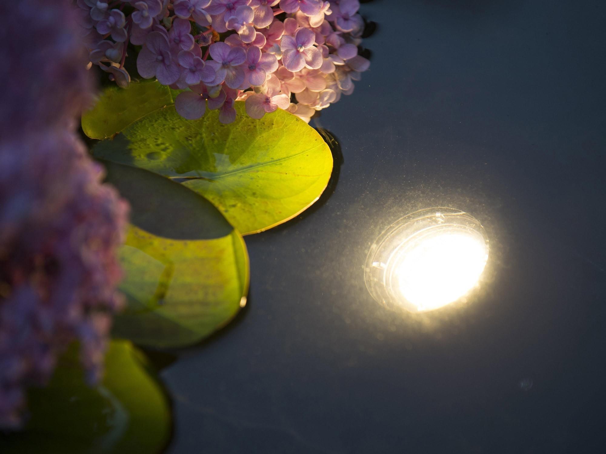Unterwasserbeleuchtung / Teichbeleuchtung Ubbink Aqualight 30 LED Bild 3