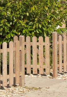 Einzeltor / Pforte für Vorgartenzaun Lärche 20x120 Türelement 100x80cm