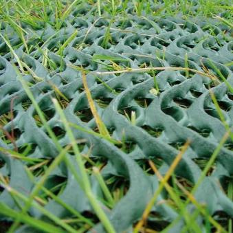 Rasenschutzgitter Premium Noor grün 60x80cm Bild 1