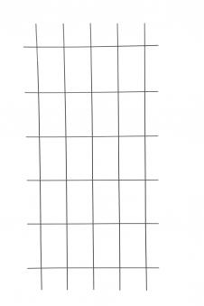 Gitterspalier / Rankhilfe Rechteckform floraworld anthrazit 75x150cm Bild 1