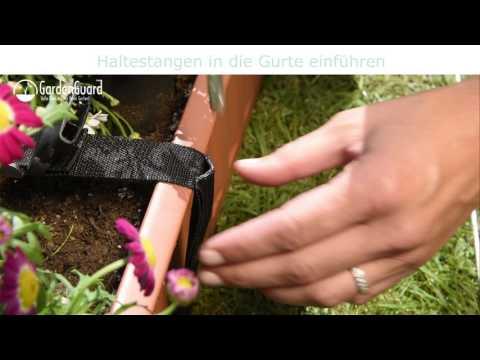 Balkonblumenschutz Pflanzenschutz Video Screenshot 1951