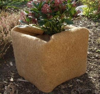 Kokosschutzmatte / Winterschutzmatte Noor 1,5x0,5m Bild 1