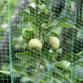 Obstbaumnetz classic floraworld 8x8m grün Bild 1
