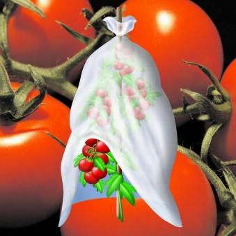 Tomatenvlies / Tomatenhaube Noor 10x0,7m Bild 2
