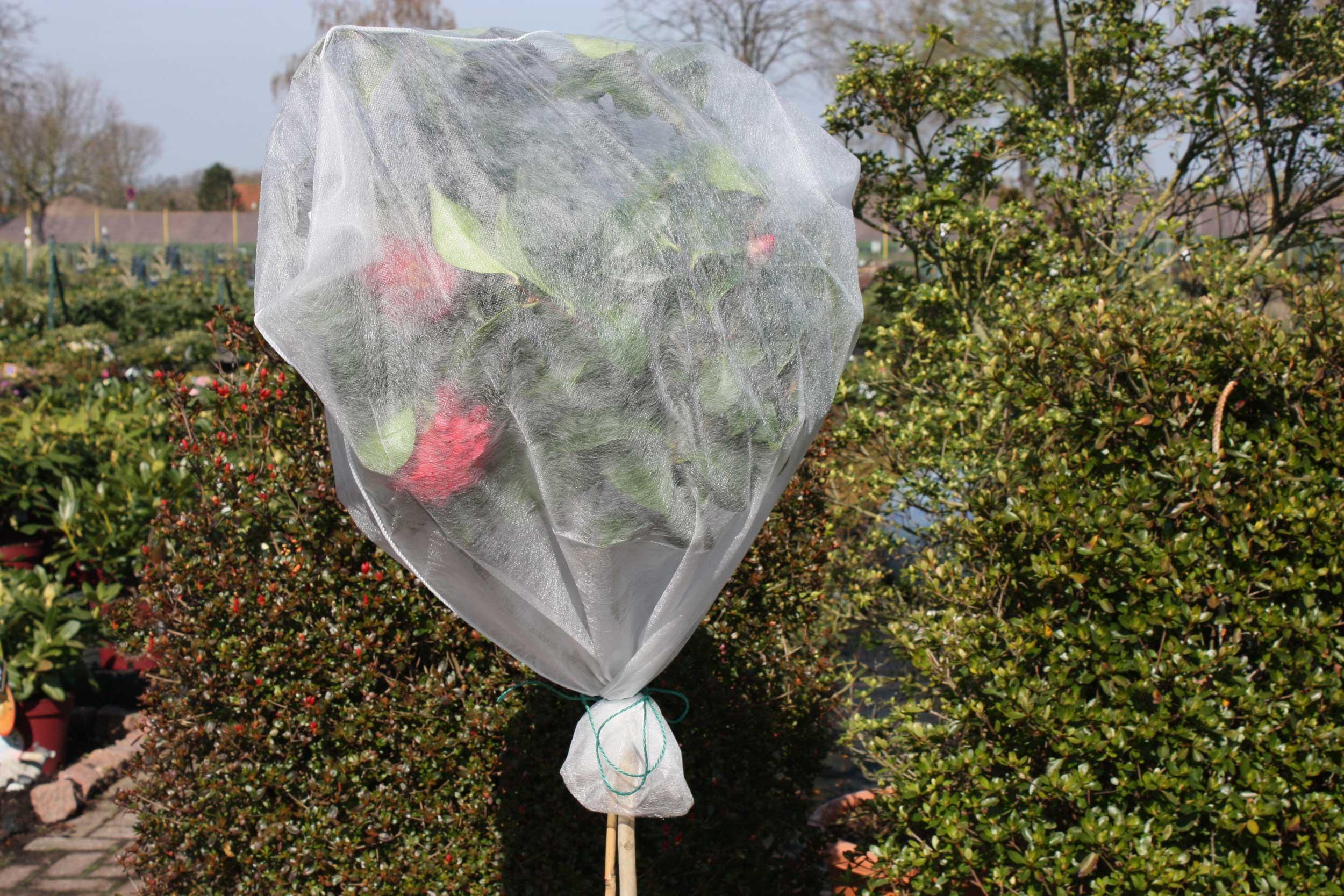 Winterschutz Pflanzen / Rosenschutzvlies 80x75cm 5 Stück Bild 1