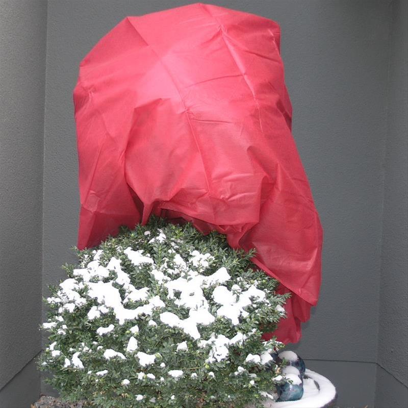 Winterschutz / Wintervlies Noor rot 1,6x5m 34g/m² Bild 1