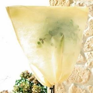Winterschutz für Pflanzen / Kübelpflanzen Sack Vlies 60x80cm 2 Stück Bild 1