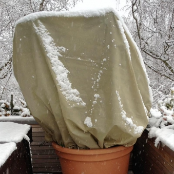 Winterschutzhaube für Pflanzen XXXL Noor 200x300cm 70 g/m² Bild 1
