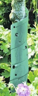 Baumschutz Spiralen / Baumstamm Schutz classic floraworld 60cm 2 Stück Bild 2