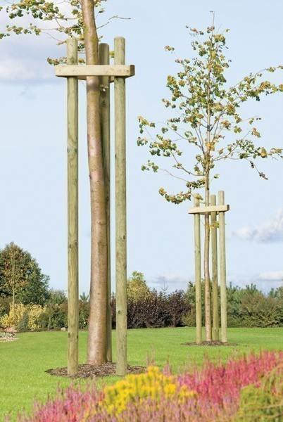 Baumpfahl / Pflanzpfahl / Holzpfahl gespitzt und gefast kdi Ø 6x200cm Bild 2