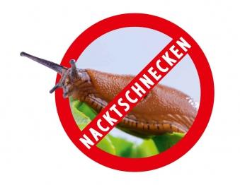 Schneckenbarriere / Schneckenschutz Noor 0,20x8m Bild 3