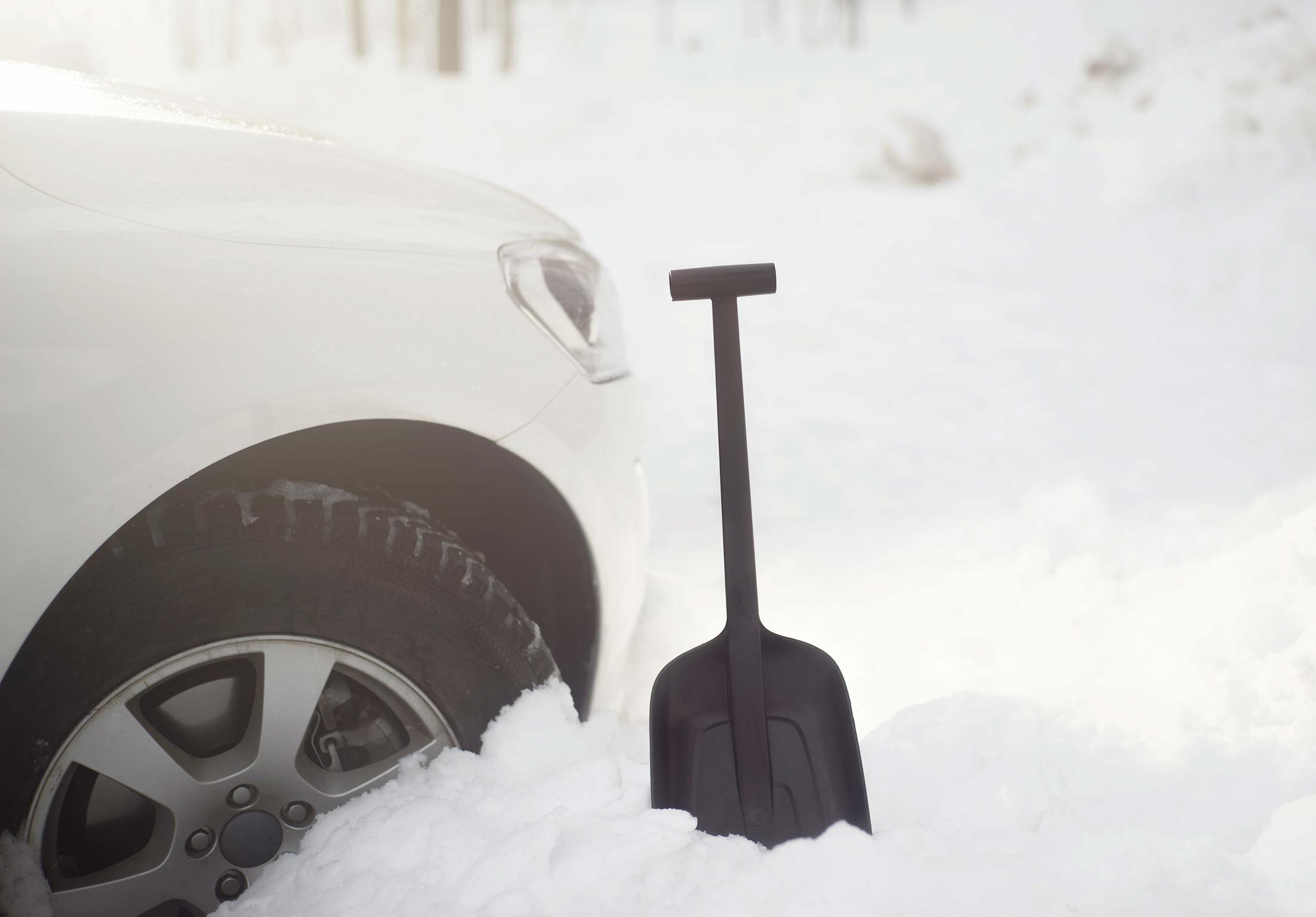 FISKARS Schneeschaufel / Solid Autoschaufel Bild 2